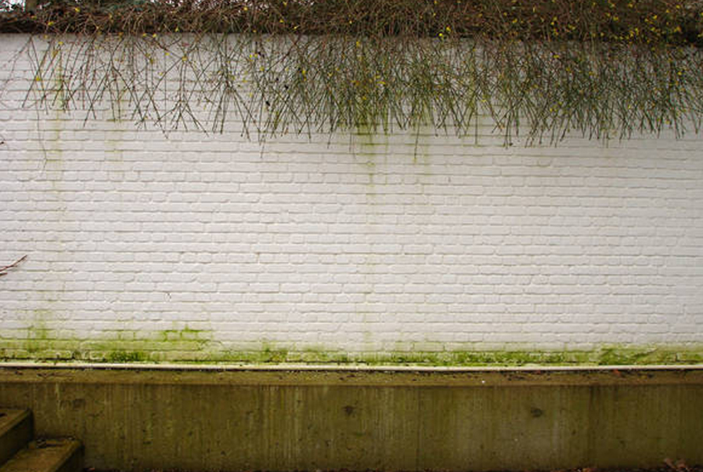 Muren en beton